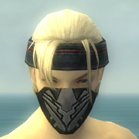 File:Assassin Kurzick Armor M gray head front.jpg