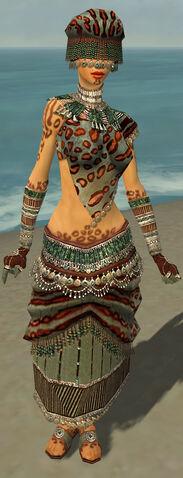 File:Ritualist Elite Exotic Armor F gray front.jpg