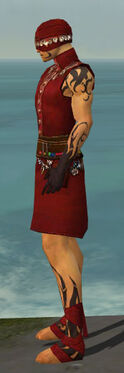 Ritualist Shing Jea Armor M dyed side