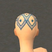 File:Monk Elite Luxon Armor F dyed head back.jpg