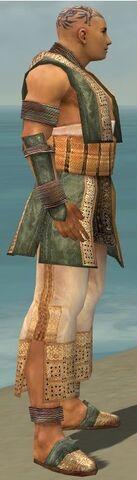 File:Monk Vabbian Armor M gray side.jpg