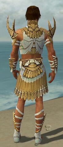 File:Paragon Elite Sunspear Armor M dyed back.jpg