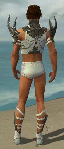 File:Paragon Elite Sunspear Armor M gray chest feet back.jpg