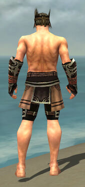 Warrior Ancient Armor M gray arms legs back