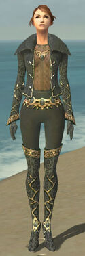 Mesmer Krytan Armor F gray front
