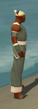 Monk Ascalon Armor M gray side