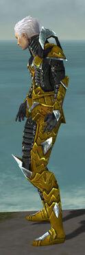 Necromancer Profane Armor M dyed side