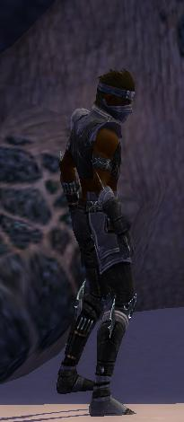 File:Assassin Luxon Armor M gray side.jpg