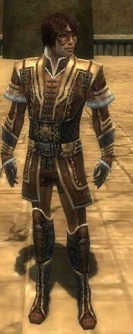 File:Mesmer Elite Sunspear Armor M dyed front.jpg