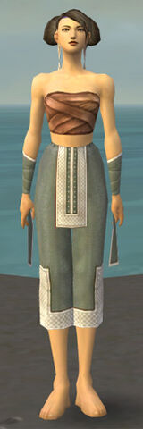 File:Monk Krytan Armor F gray arms legs front.jpg