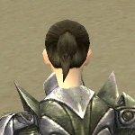 Warrior Templar Armor F gray back clipping issue