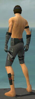 Assassin Canthan Armor M gray arms legs back