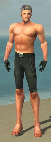 File:Mesmer Elite Rogue Armor M gray arms legs front.jpg