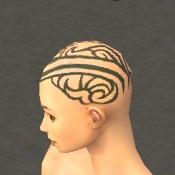 File:Monk Asuran Armor F gray head side.jpg