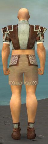 File:Monk Censor Armor M gray chest feet back.jpg