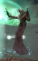 Portal Wraith