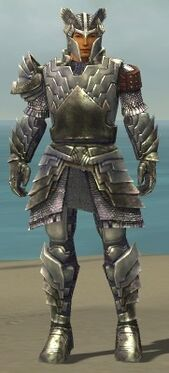 Warrior Templar Armor M gray front