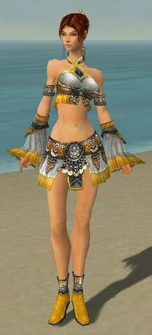 File:Elementalist Luxon Armor F dyed front.jpg