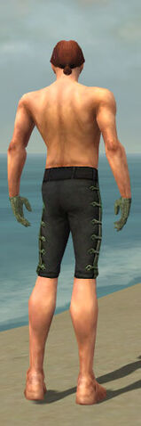 File:Mesmer Shing Jea Armor M gray arms legs back.jpg
