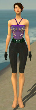 Mesmer Tyrian Armor F gray arms legs front