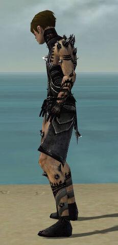 File:Necromancer Obsidian Armor M dyed side.jpg