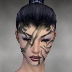 File:Necromancer Luxon Armor F gray head front.jpg