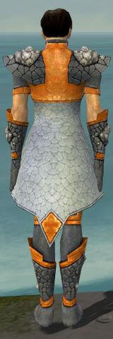 File:Elementalist Stoneforged Armor M dyed back.jpg