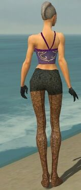 Mesmer Elite Elegant Armor F gray arms legs back
