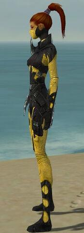 File:Assassin Kurzick Armor F dyed side.jpg