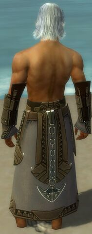 File:Dervish Asuran Armor M gray arms legs back.jpg