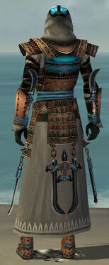 Dervish Monument Armor M gray back