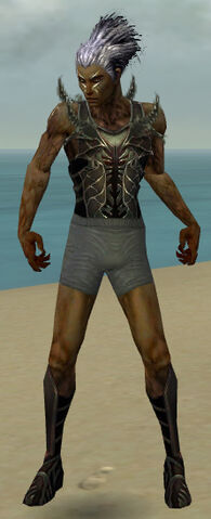 File:Necromancer Istani Armor M gray chest feet front.jpg