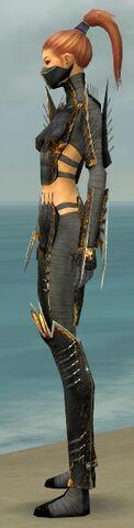 File:Assassin Exotic Armor F gray side.jpg