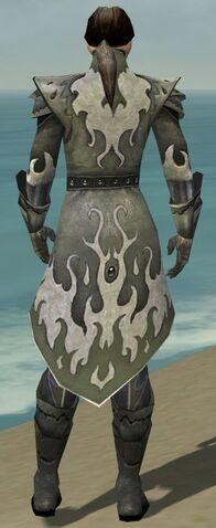 File:Elementalist Elite Flameforged Armor M gray back.jpg