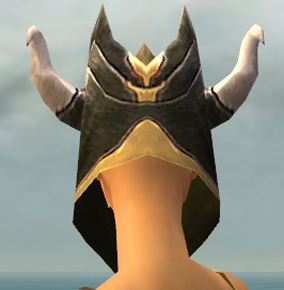 File:Warrior Norn Armor F dyed head back.jpg