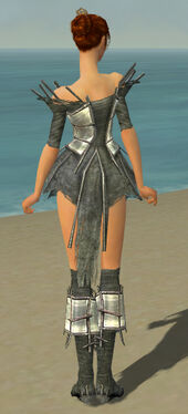 Elementalist Primeval Armor F gray chest feet back