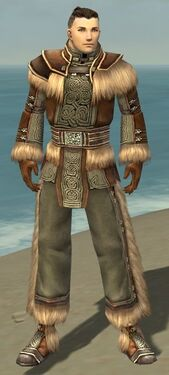 Monk Norn Armor M gray front