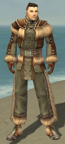 File:Monk Norn Armor M gray front.jpg