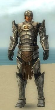 Warrior Sunspear Armor M gray front