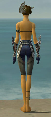 File:Assassin Norn Armor F gray arms legs back.jpg
