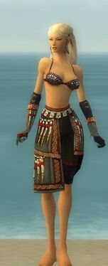 Ritualist Elite Canthan Armor F gray arms legs front