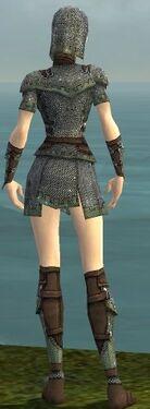 Warrior Tyrian Armor F gray back