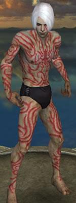 File:Necros of Norath.jpg