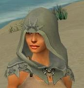 File:Dervish Elite Sunspear Armor F gray head front.jpg