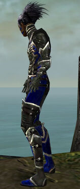 Necromancer Kurzick Armor M dyed side