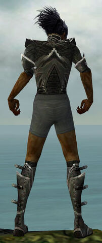 File:Necromancer Kurzick Armor M gray chest feet back.jpg