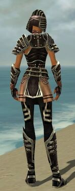 Warrior Ancient Armor F gray back