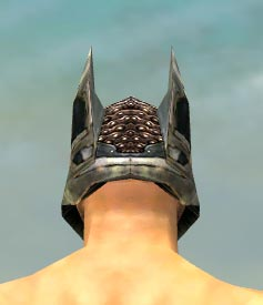 File:Warrior Elite Kurzick Armor M gray head back.jpg