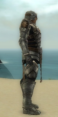 File:Warrior Sunspear Armor M gray side.jpg