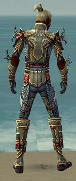 Assassin Monument Armor M gray back